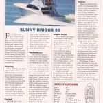 Briggs 56 Marlin Mag